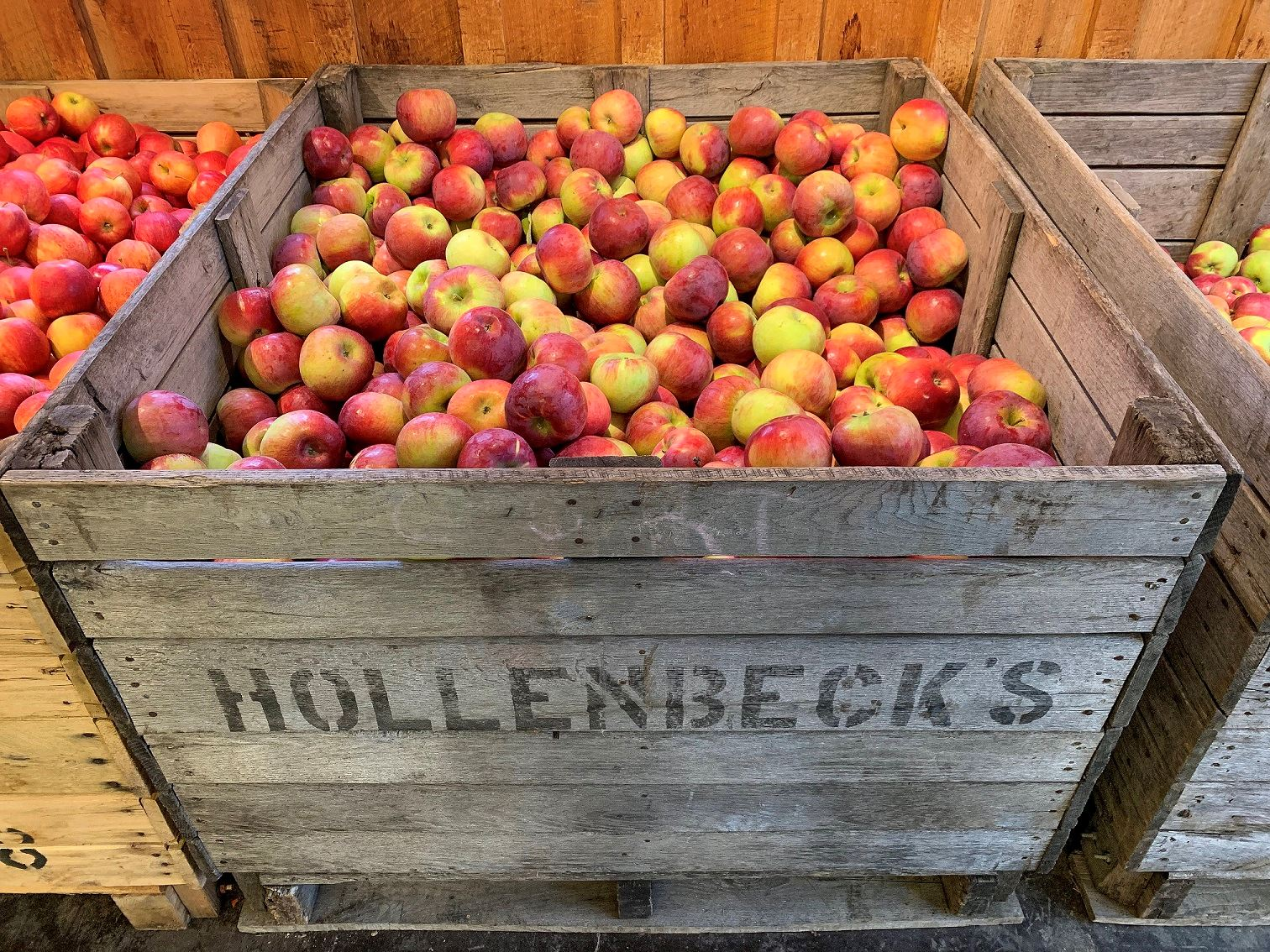 Hollenbecks Cider Mill