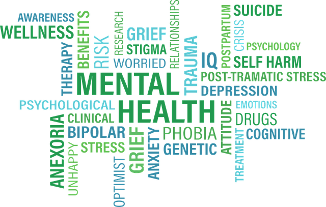 Mental Health Terms
